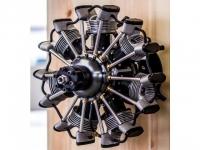 Arien 150 7 Zylinder